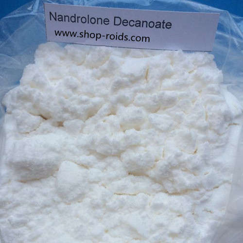 Nandrolone decanoate powder www.shop roids.com