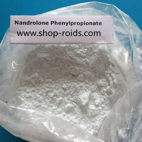 Nandrolone phenylpropionate powder www.shop roids.com